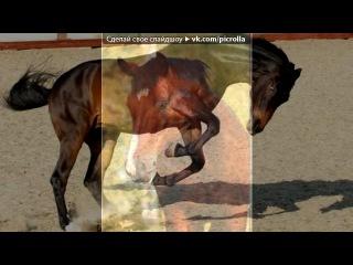 «мои лошадки ной и нелли» под музыку Dj DimixeR - Песня про лошадь, до боли известная всем ЛАЙНЕРовцам в новом звучании! ;). Picrolla